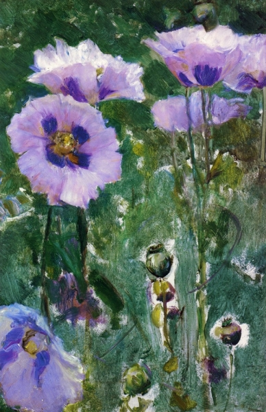 Poppies Pavillon Colombe by Walter Gay