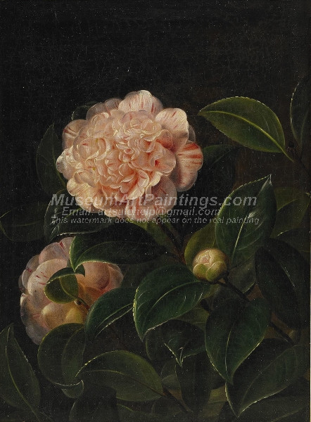 Still Life with Camelia
