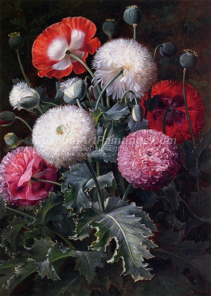 Still Life with Poppies and Other Flowers