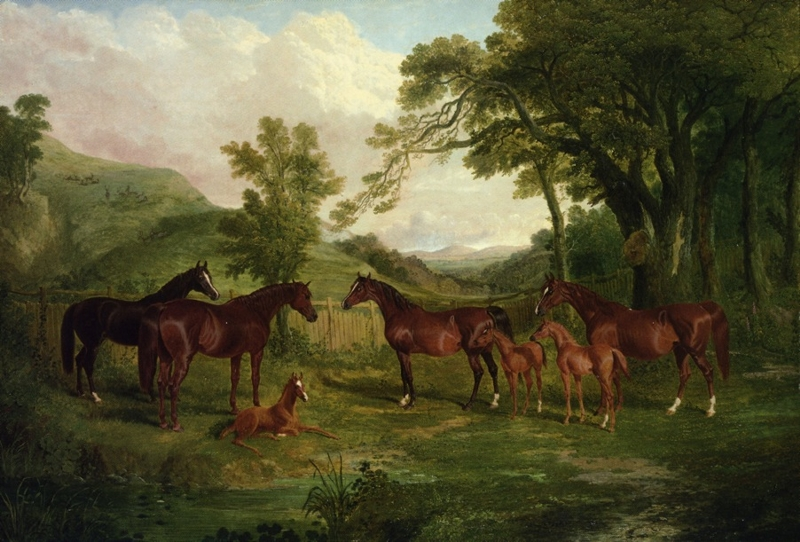 Streatlam Stud Mares and Foals by John Frederick Herring
