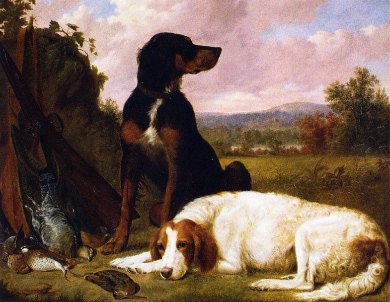 The Days Bag Guns Dogs and Game by Thomas Hewes Hinckley