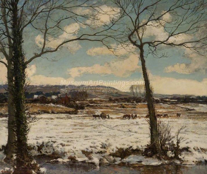 The Frozen Meadow Winter
