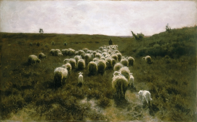 The Return of the Flock Laren by Anton Mauve