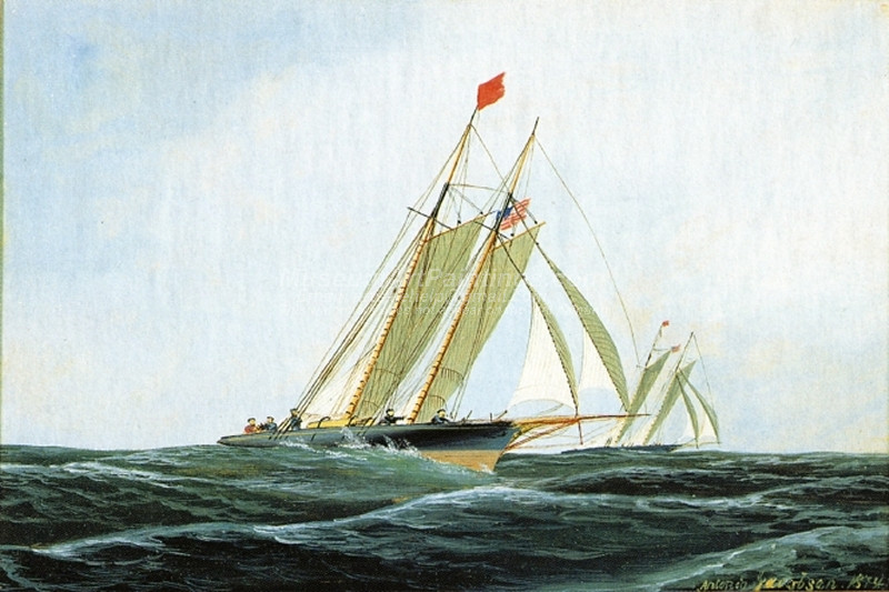 The Yacht Race