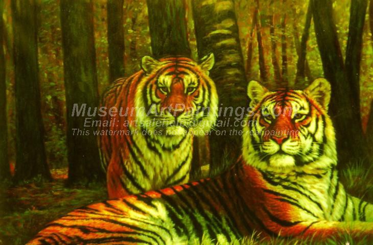 Tiger Oil Paintings 002
