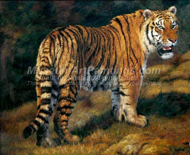 Tiger Oil Paintings 005