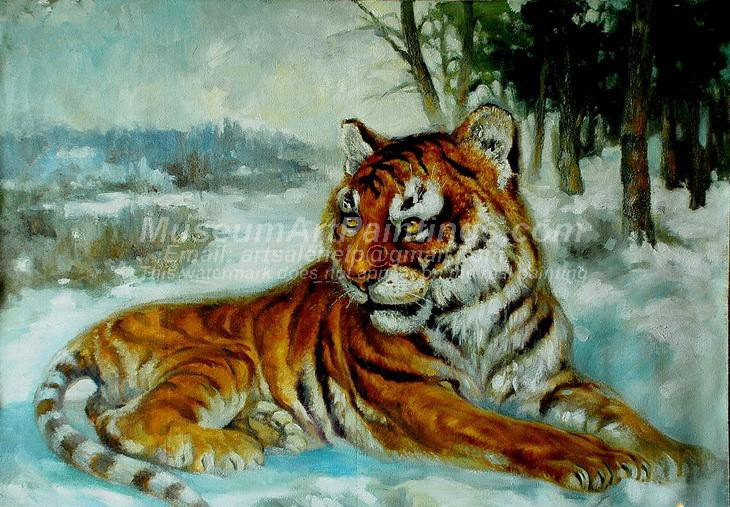 Tiger Oil Paintings 015