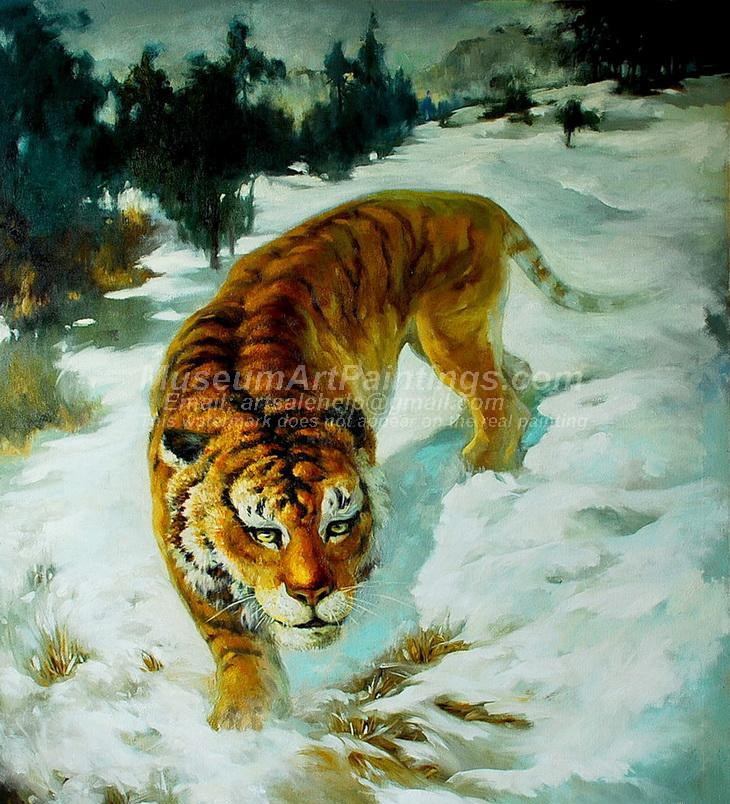Tiger Oil Paintings 016