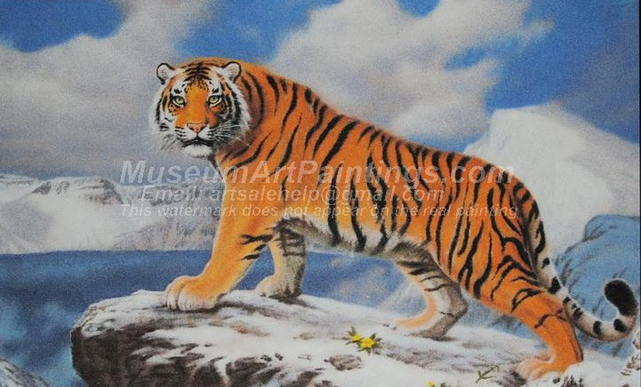 Tiger Oil Paintings 017