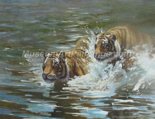 Tiger Oil Paintings 021