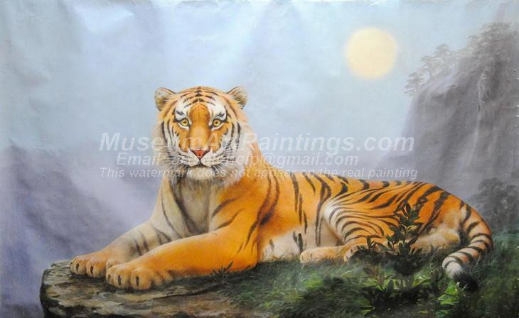 Tiger Oil Paintings 026
