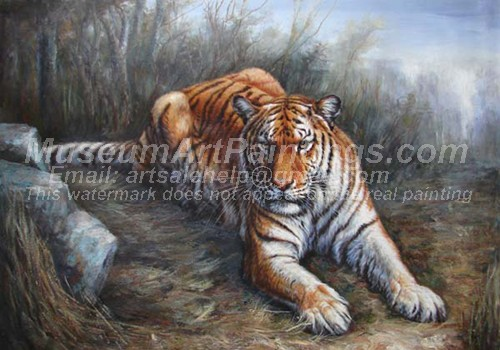 Tiger Oil Paintings 027