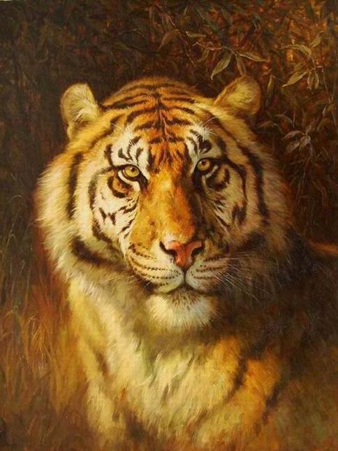 Tiger Oil Paintings 033
