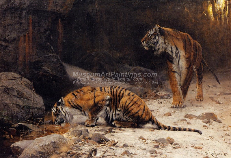 Tigers at a Drinking Pool by Wilhelm Kuhnert