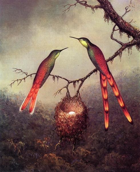 Two Hummingbirds Garding an Egg by Martin Johnson Heade