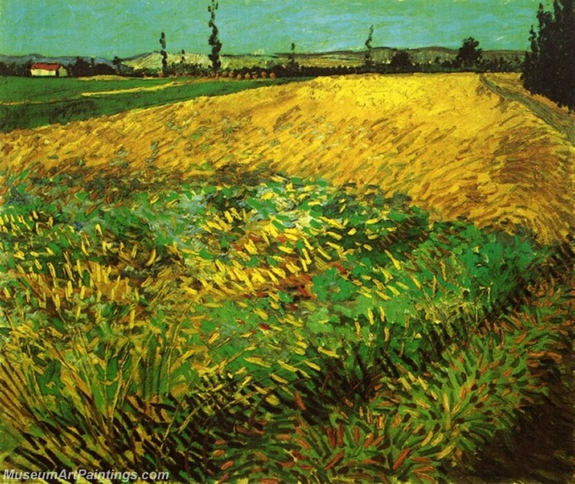 Wheat Field with the Alpilles Foothills in the Background Painting