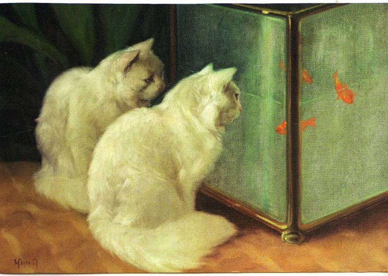 White Cats Watching Goldfish by Arthur Heyer